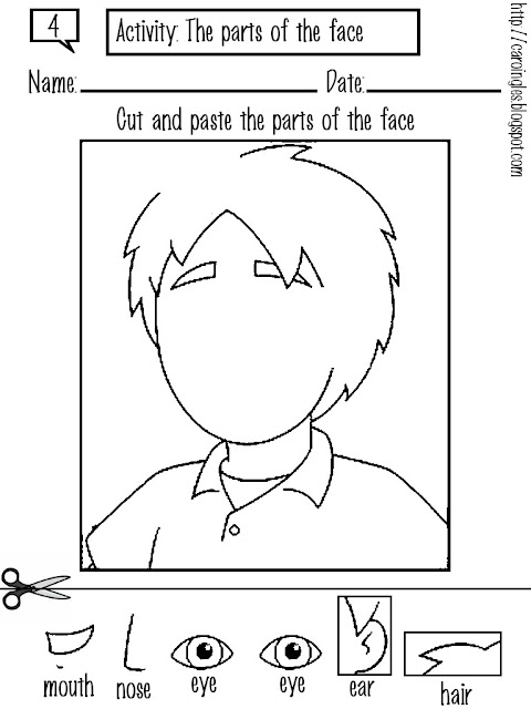 Eye Essay Research Paper The Human Eye